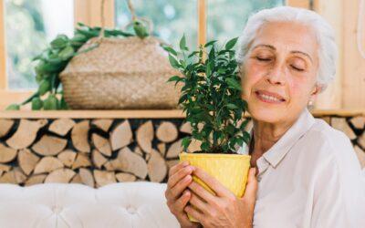 Senzorična stimulacija pri osebah z demenco